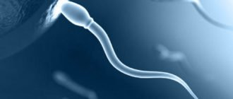 Чем полезна сперма