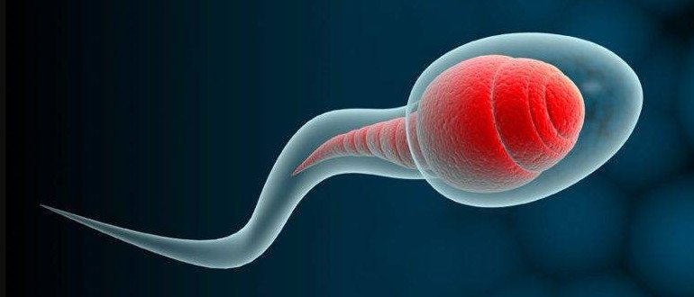 Почему сперма очень липкая