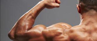 Влияет ли сперма на рост мышц