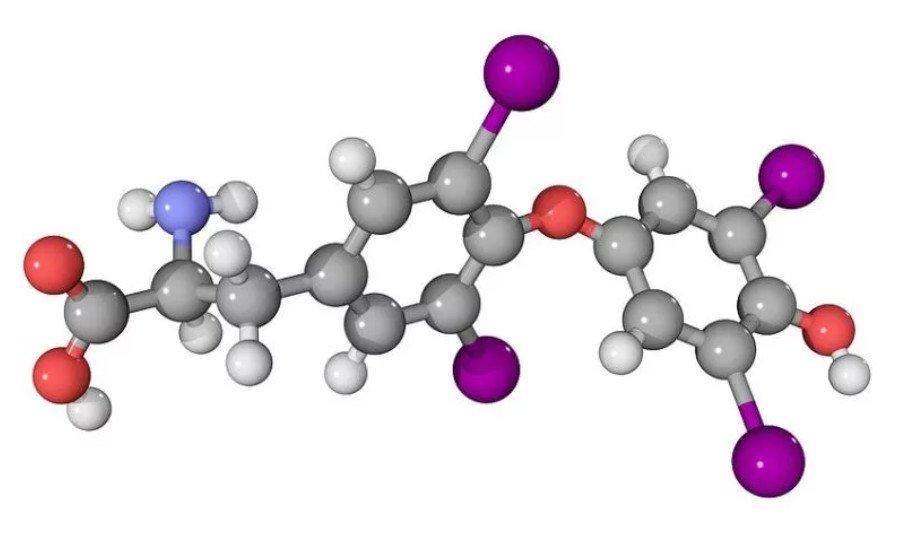 Влияние алкоголя на сперму мужчины
